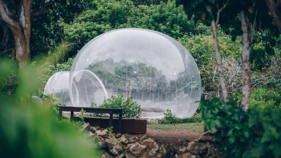 Una jungle bubble a bali